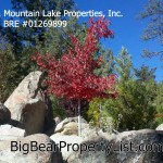 October Sales Trend for Big Bear Real Estate