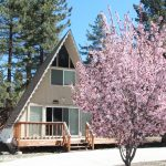April 2017 Absorption Rate in Big Bear